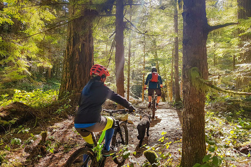 learn to ride a mountain bike lessons coaching