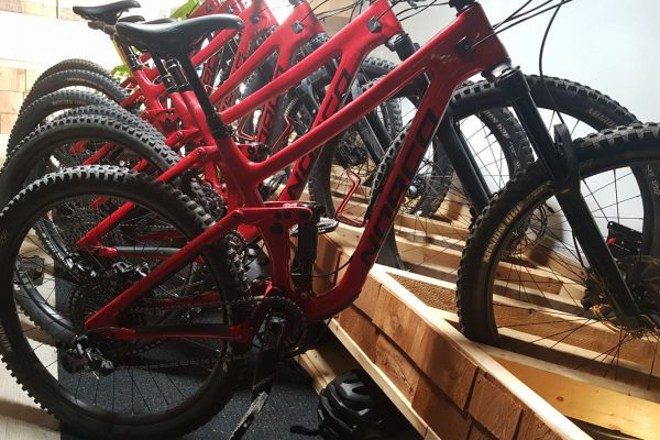 squamish-rental-bikes-norco-sight-1366